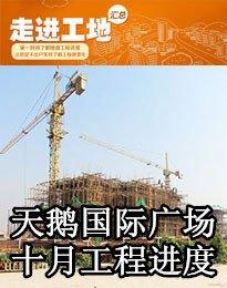 天鹅国际广场十月工程进度