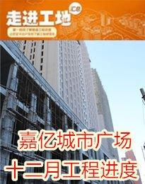 嘉亿城市广场十二月工程进度