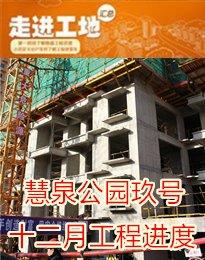慧泉公园玖号十二月工程进度