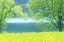 访谈预告:春季养生怎么做才对?龙华医院专家在线支招!