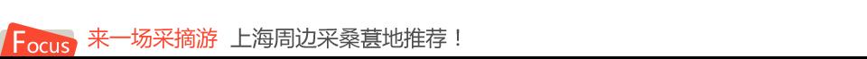 来一场采摘游  上海周边采桑葚地推荐!