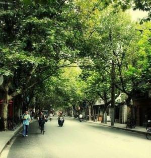 中山公园―徐家汇:品味老上海故事