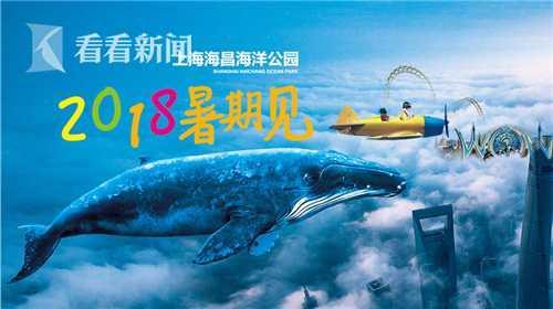 上海海昌海洋公园预计今年暑期营业 将PK迪士尼