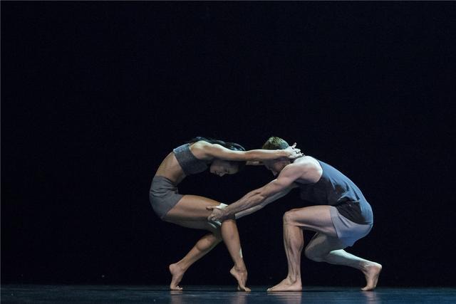 悉尼舞蹈团现代舞经典《反向》已临沪开演