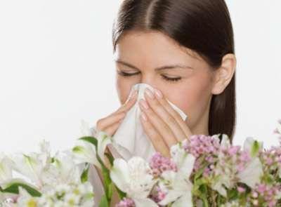 日本最新研究发现:转基因大米可治疗花粉过敏