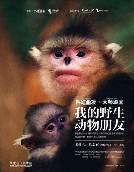 奚志农--我的野生动物朋友