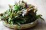 食疗养生:香椿是此时补阳虚最好的菜!