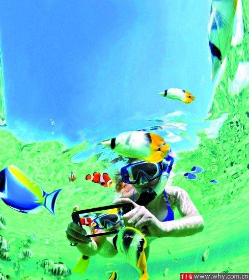 长风海洋世界会是你十一长假期间不二的选择,大型的海底动物展览,妙趣