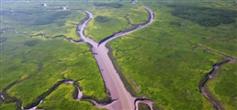 首批13个市级重要湿地公布