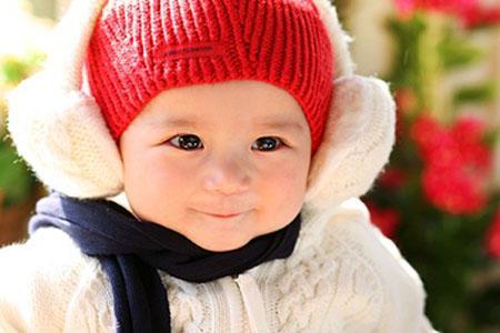 粽子冬季a粽子攻略不要裹成小攻略奥斯汀v粽子宝宝图片