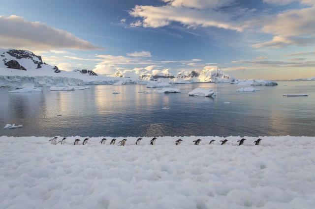 极地游迈入个性化时代 今年首艘登陆南极旅游产品面世