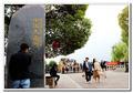 曾经是江南十大名镇之首 如今鲜少有游客知道这里