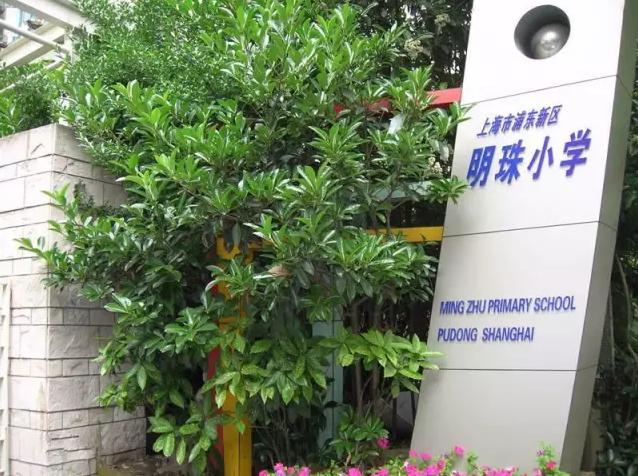 谁说公办不如民办 浦东有一所上海最牛的公办小学