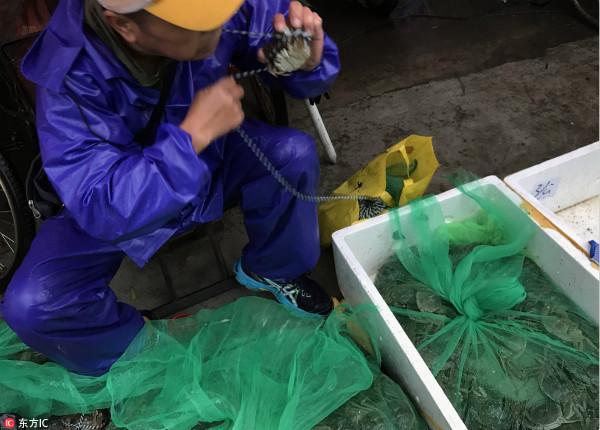 申城节后蔬菜价格回落 大闸蟹集中上市价格降一成