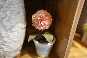 纸质绣球花
