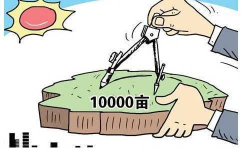 沪3月新政:敬老卡申领全市通办 公园内也要禁烟