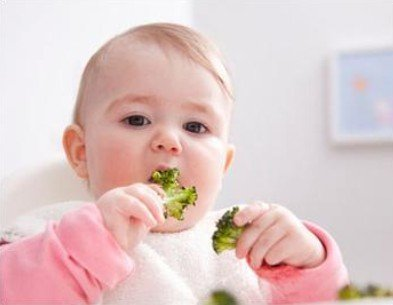 1岁以内宝宝食谱黑名单