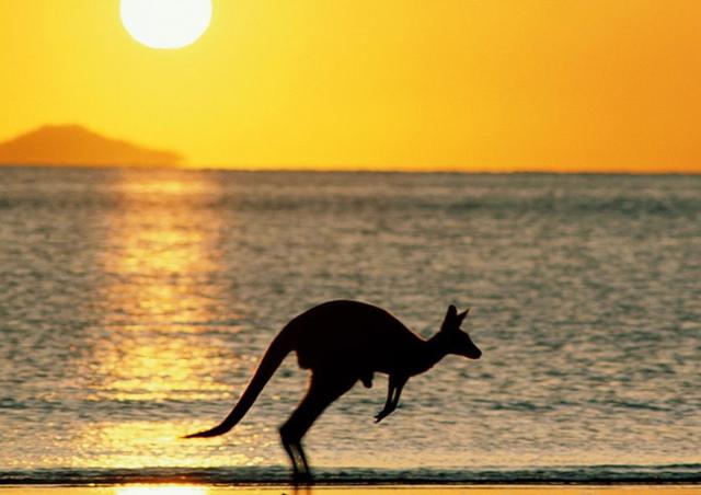 澳洲今年发放500万签证 赴澳留学进入黄金期