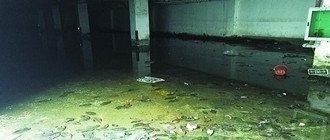 小区地下车库臭水淹10年没人管