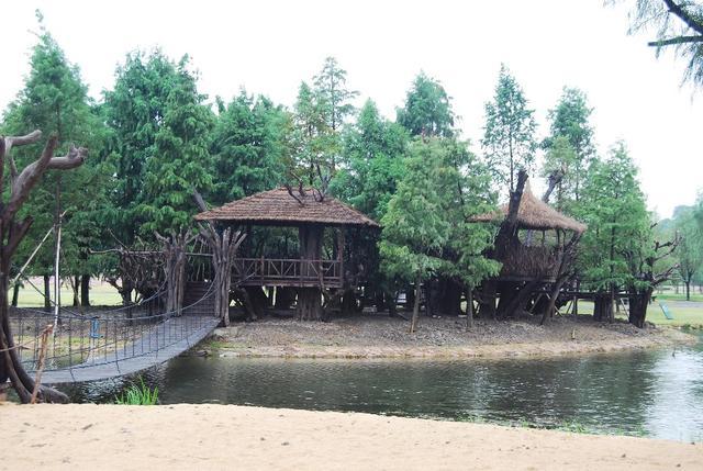 辰山植物园全新打造儿童植物园