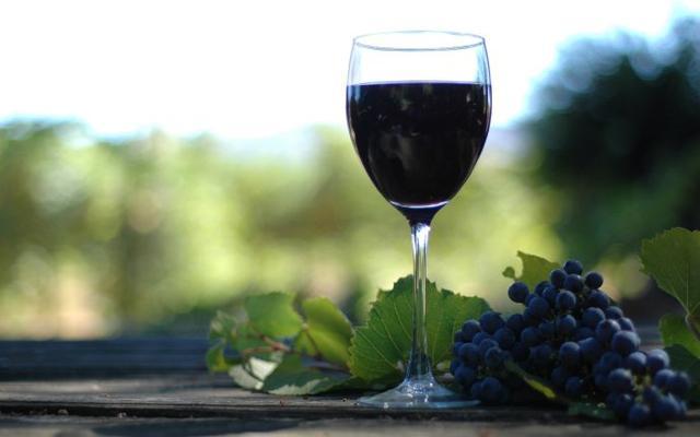 向葡萄酒极客学习选酒