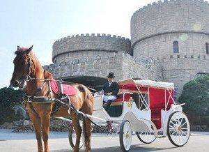 金庭庄园:驾着马车实现浪漫完美婚礼