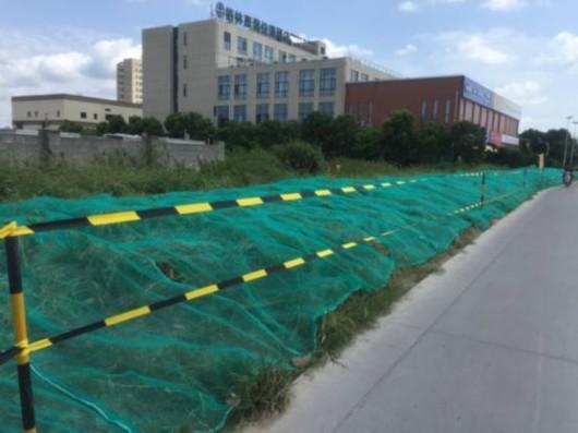 沪上首条BRT沿线绿色景观工程预计年底竣工