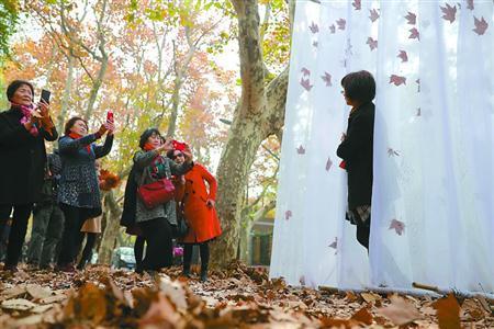 上海岳阳路落叶不扫延至月底 落叶展留住秋色