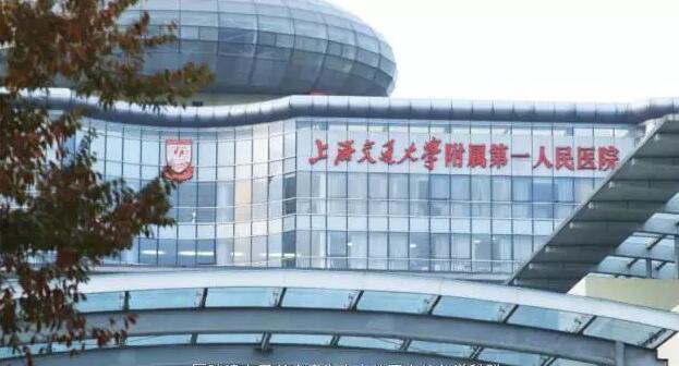 上海闵行区水溥园风景
