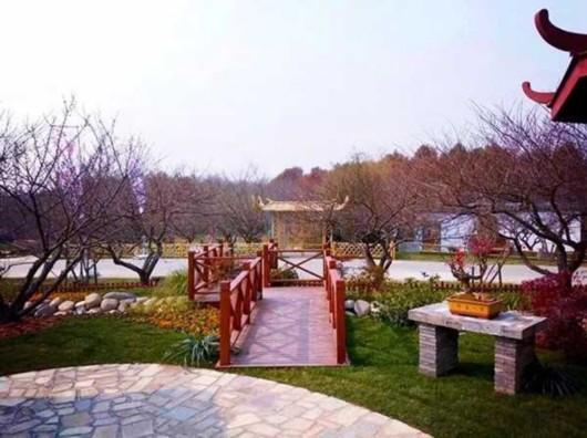 上海植物园喜获中国梅花蜡梅展金奖