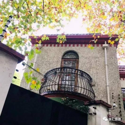 18条特色主题线路 带你去逛梧桐树下的徐汇老建筑