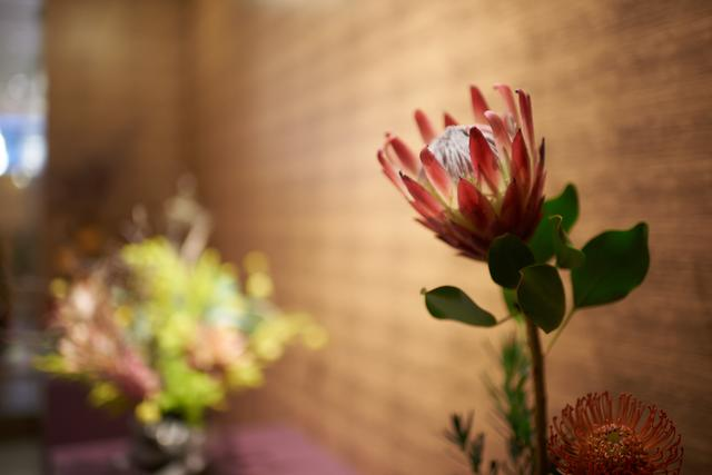 日本草月流创立90周年庆上海草月展隆重开幕