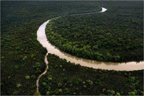 十大邮轮线路串起自然生态之旅