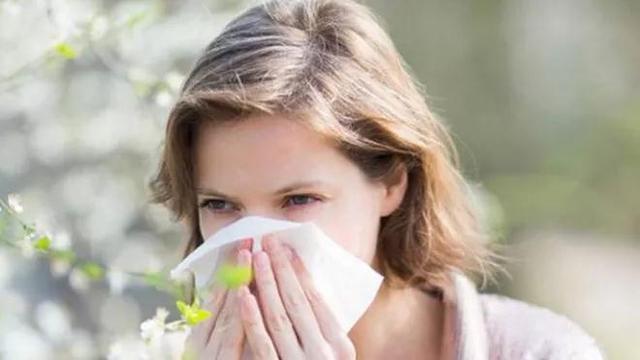 想赏花担心花粉过敏?预防看这里!