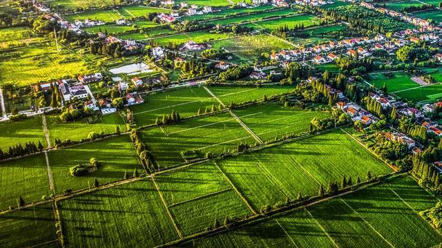 崇明推出5万亩优质土地进行招商 现场意向企业