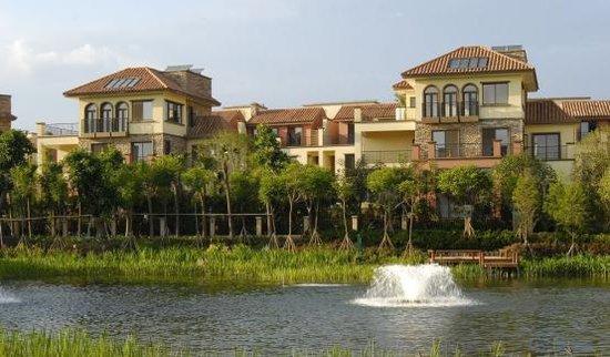 新房价格上涨12个月!这里竟然还有4000多的房子!