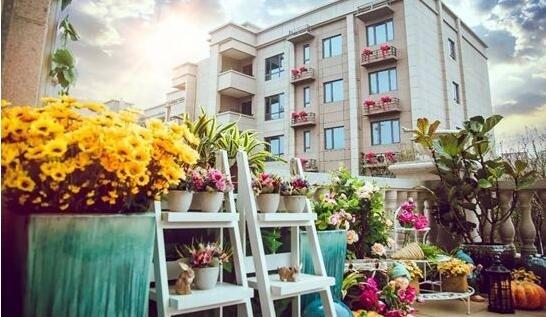 获证品质新盘领衔房产市场  买房迎来新起点!