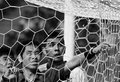 读图时代:绿城英雄射破球网