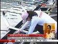 视频:神秘面纱揭开 金紫薇成中国亚运女旗手第一人