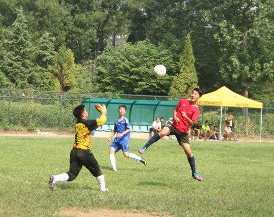 河南省校园足球冠军杯中学组 14所定点校参加