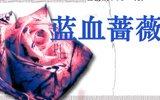 398期:蓝血蔷薇
