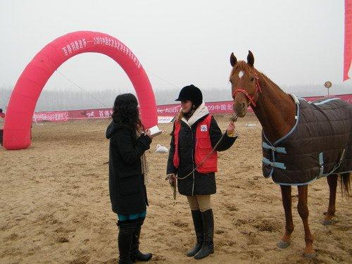马术耐力赛女骑手董爱丽:我来自世界马都