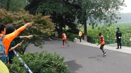 南京马拉松第一集团全跑丢 弃赛或因引导不明
