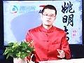 视频:杨毅长篇评书《姚明传》第六回