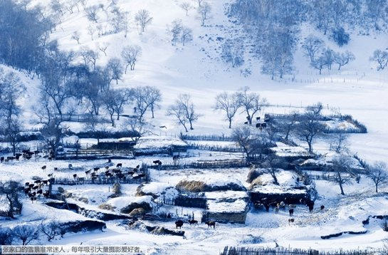 张家口雪景很美