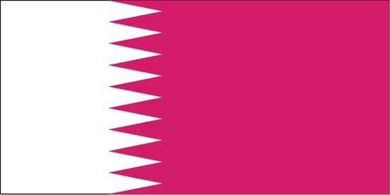 2011亚洲杯东道主卡塔尔介绍