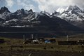 新蜂女子车队美景聚焦 雪山牦牛演绎西域壮观