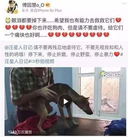 不光看到狗狗被虐待痛到心碎