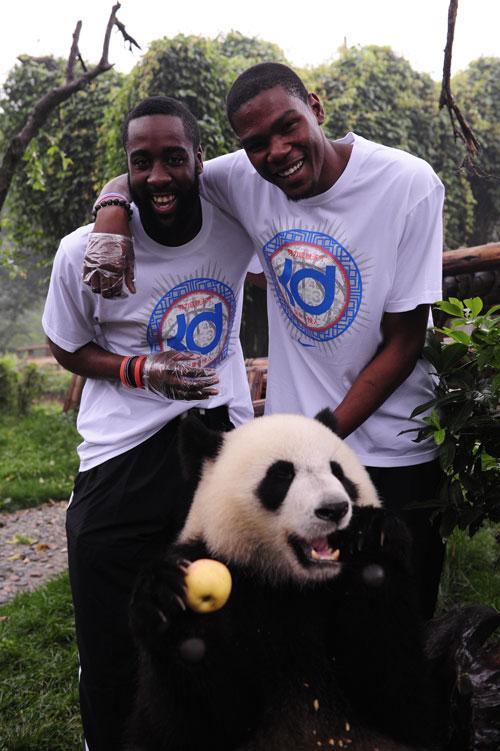 《登临天下》第九期:哈登抱大熊猫逛世博会