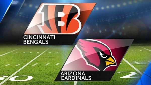 NFL-9:30视频直播强强对话 猛虎红雀正面交锋
